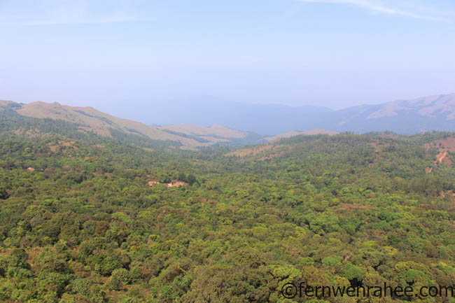 Experience Best of Coorg: Coffee and Cauvery