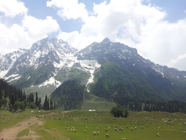 Gulmarg- famous places to visit in kashmir