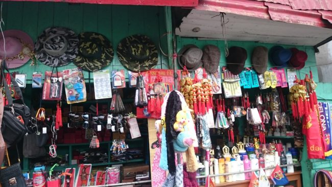 Pashupati Market Nepal from Darjeeling