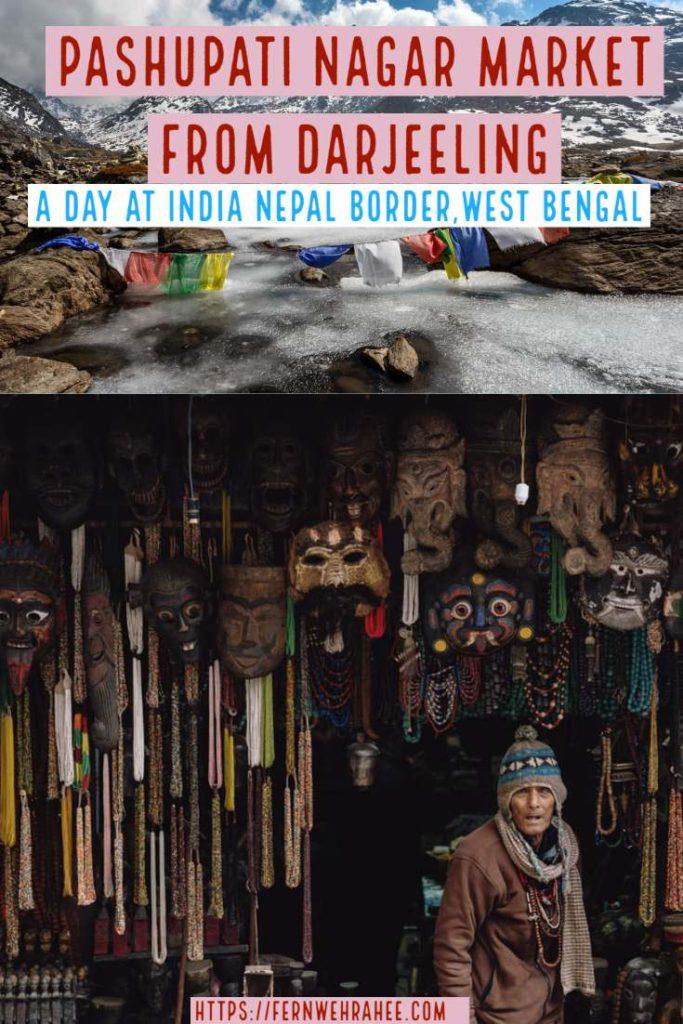 Pashupati Market Nepal visit from Darjeeling as day trip