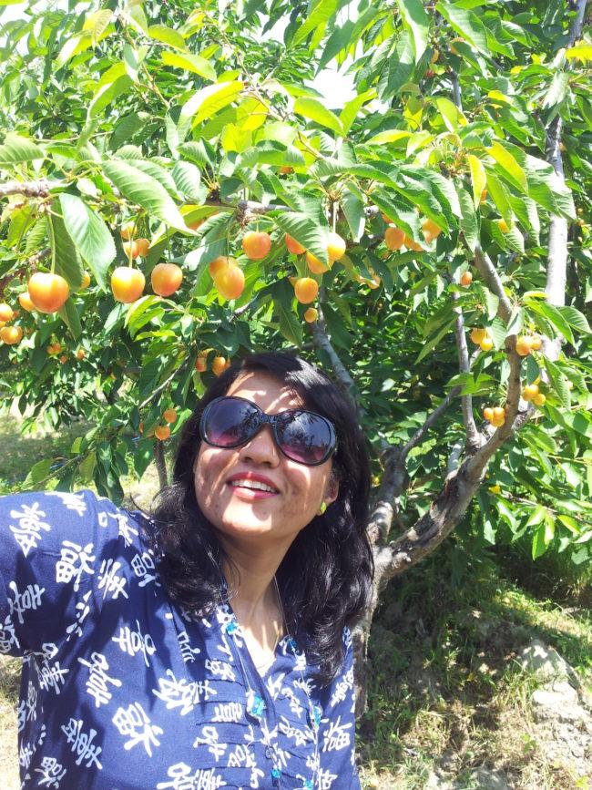 summer season in Kashmir