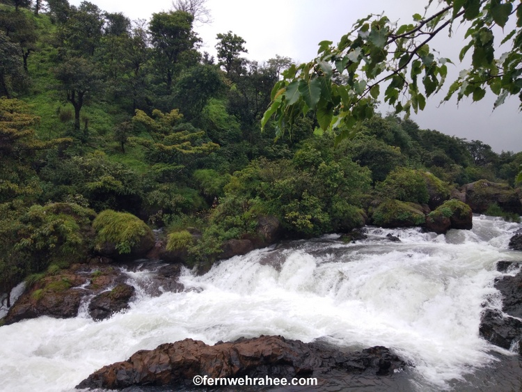 Places to visit near Kaas Plateau