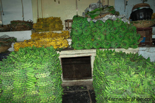 Places to visit in Mysore in 2 days
