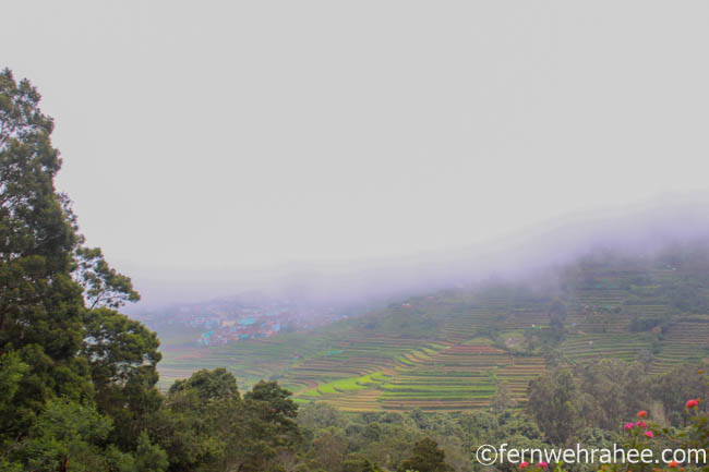 Poombarai village view