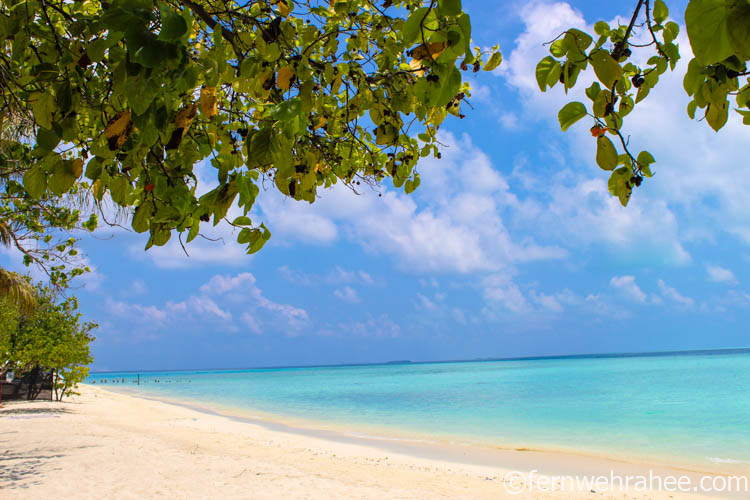 Best resorts for Maldives Honeymoon