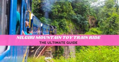 Nilgiri Mountain Train travel Guide from Mettupalayam to Ooty train