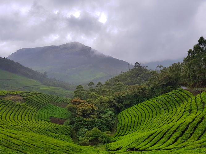 Kerala Road trip in India